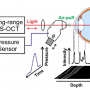 Air-Puff-Induced Dynamics of Ocular Components Measured with Optical Biometry