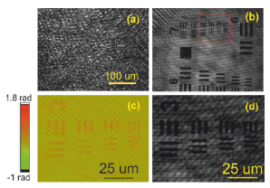 Fast method of speckle suppression for reflection phase microscopy