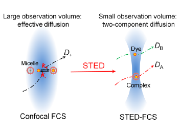 Nanoscopic Approach to Quantification of Equilibrium and Rate Constants of Complex Formation at Single-Molecule Level